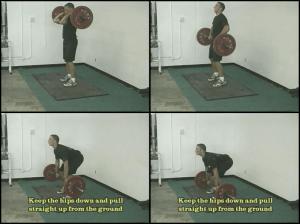 baseball strength training 2 squats