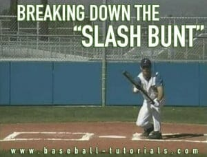 slash bunt 1