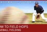 BASEBALL FIELDING HOPS