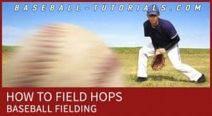 BASEBALL FIELDING HOPS